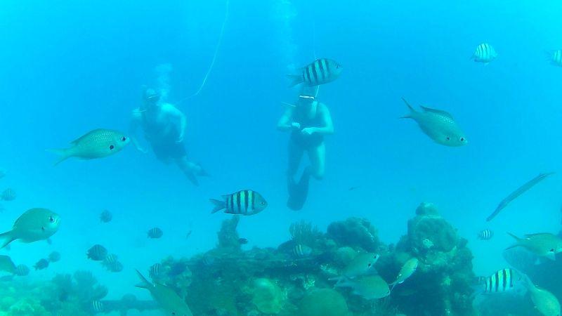 Snuba in Barbados