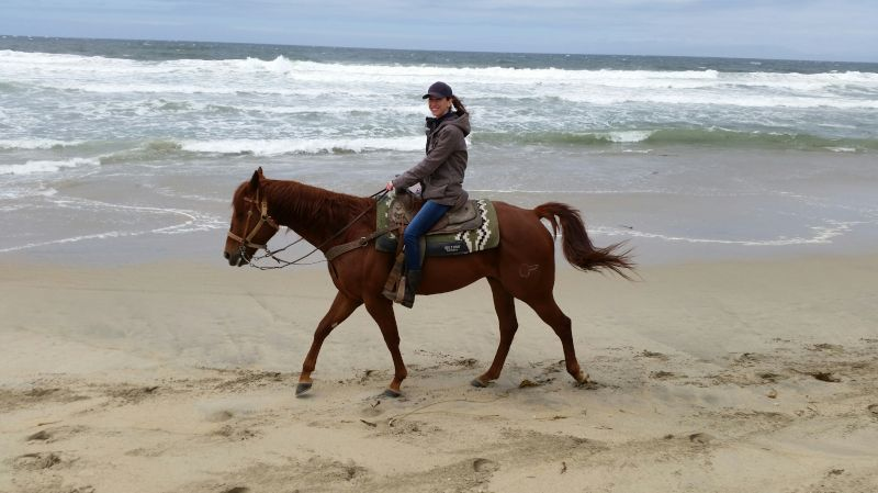 A Perfect Morning Ride on the Beach
